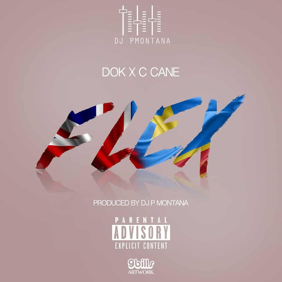dok-flex-artwork-9bills